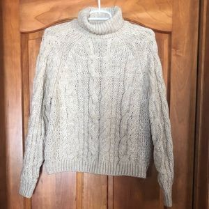 Chunky Cream H&M Cable Turtleneck Sweater - S